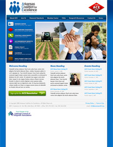 ACE Web Site Home Page